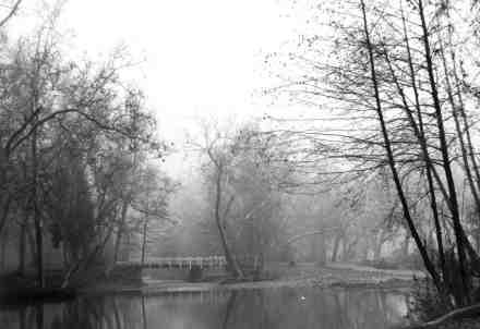 Bridge at Five Mile, 1960 Photo by Robbins King