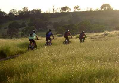 mountainbikers